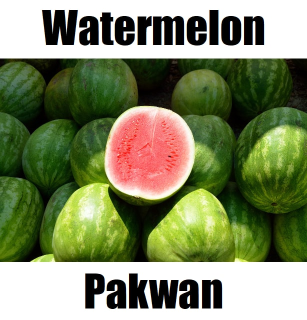Watermelon in Tagalog