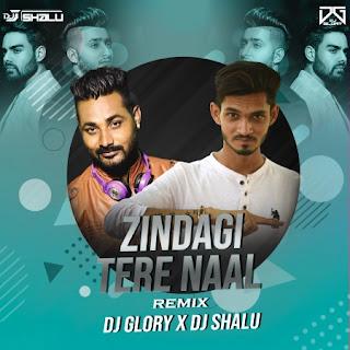 Zindagi Tere Naal (Remix) DJ Glory x Dj Shalu [NewDjsWorld.Com]