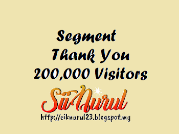 Segment Thank You 200,000 Visitors
