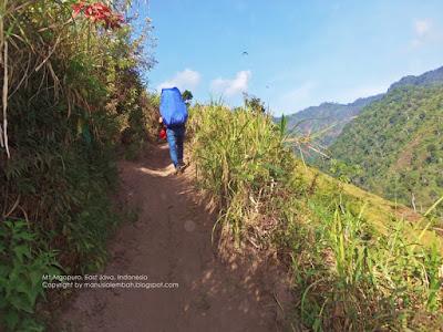 Trek gunung argopuro