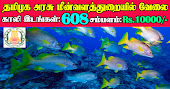 TN Fisheries Department Recruitment 2021 608 Sagar Mitra Posts
