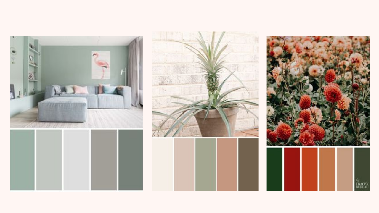 Paleta de cores do Pinterest