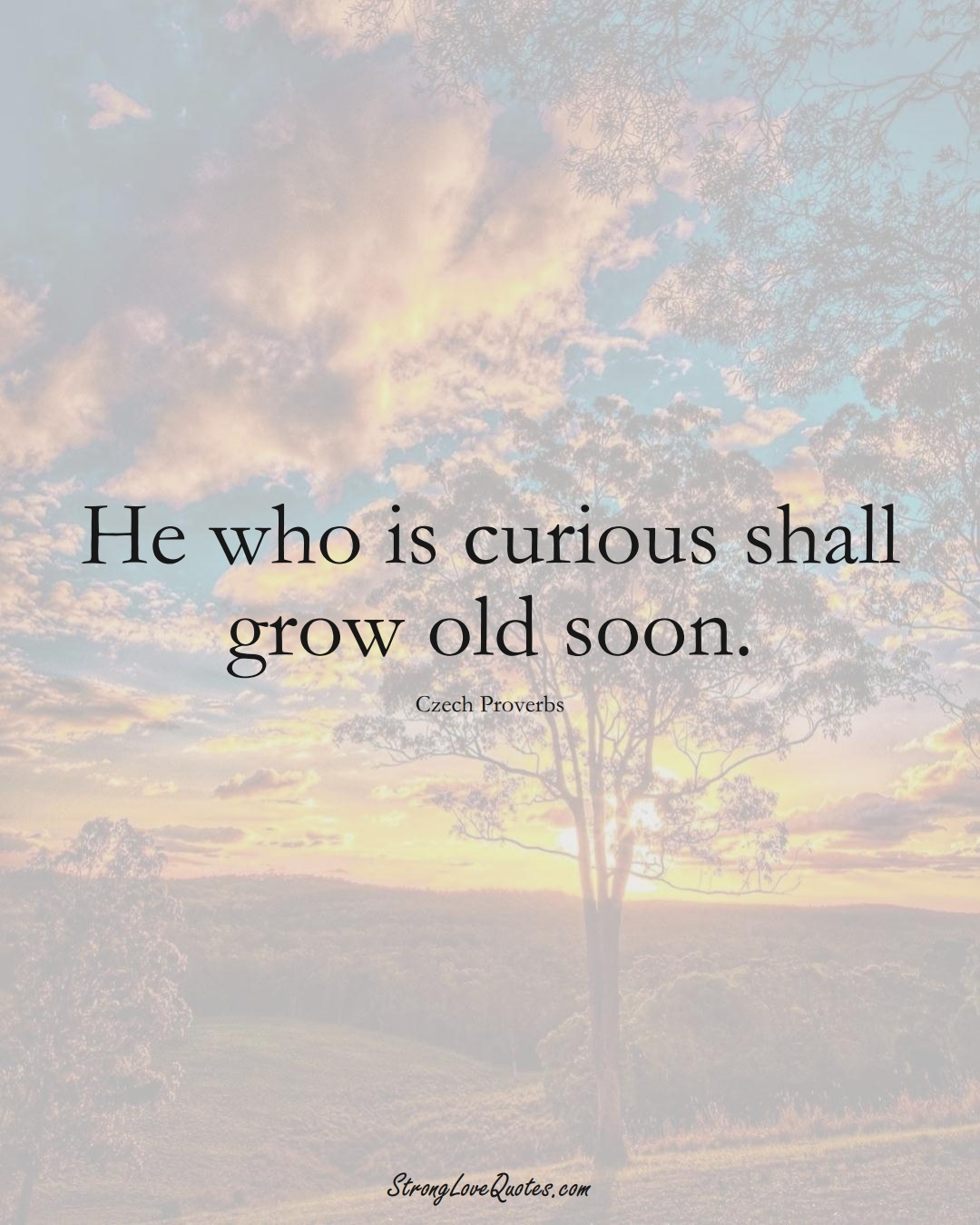 He who is curious shall grow old soon. (Czech Sayings);  #EuropeanSayings