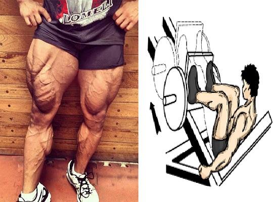 8 Exercises to build massive legs