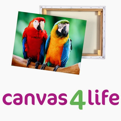 Review: Canvas4Life