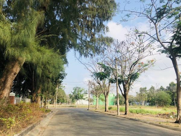 ảnh thực tế hạ tầng dự án khu đô thị Lợi Bình Nhơn