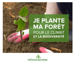 https://www.reforestaction.com/je-plante-ma-foret#ae157