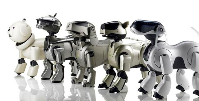 aibo puppy robot