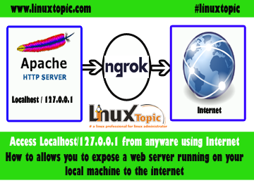 ngrok, ngrok setup, ngrok tunnel, how to use ngrok, setup ngrok, how to access localhost using internet, ngrok tutorial, ngrok download, ngrok npm,  Expose 127.0.0.1 From Local Machine to Internet