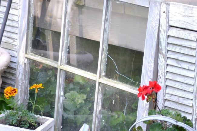 DIY Garden Bird Feeders