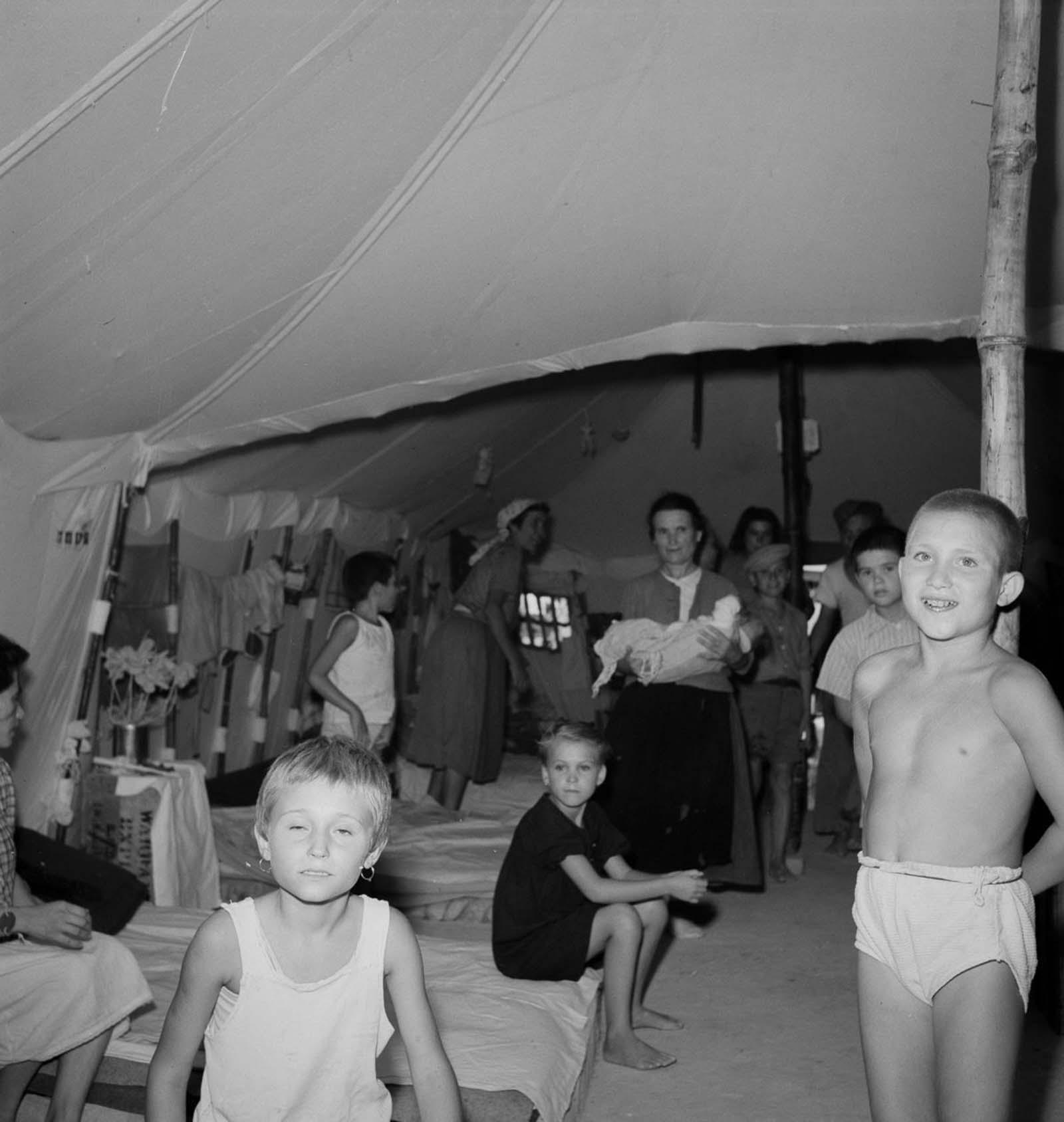 European refugees Egypt