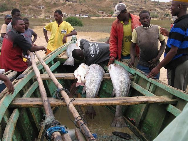 Un grupo de hombres pescando en Angola.