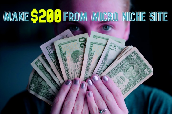 Micro Niche Site Making Pro Tips | Earn Up to 0/Month Easy