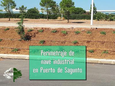 Perimetraje de nave industrial en Puerto Sagunto por Ruepra jardinería