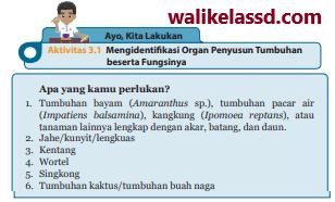 Kunci-Jawaban-IPA-Kelas-8-Ayo-Kita-Lakukan-Aktivitas-3.1-Halaman-108