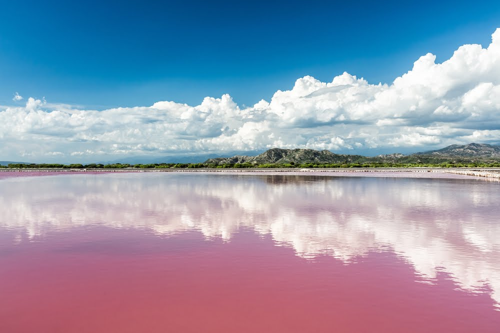 Pink Lake Retba of Senegal