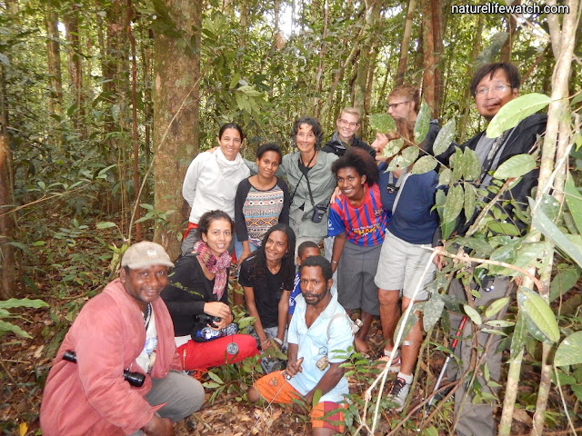 International visitors in West Papua province of Indonesia