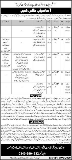 wildlife-department-jobs-kpk-2020-etes-application-form