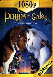 Como perros y gatos (2001) [1080p BD REMUX] [Latino-Inglés] [LaPipiotaHD]