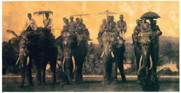 Hidden History #2 | GAJAH DI ALAM MELAYU