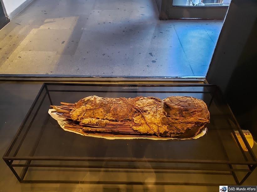 Múmia de uma criança Chinchorro no Museu Chileno de Arte Pré-colombiana em Santiago