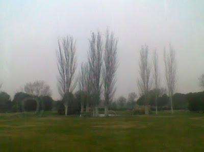 Diversidad diacr tica - Cementerio jardin alcala ...