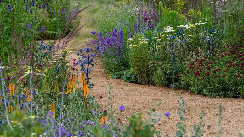 Jardín seco. Plantación con plantas vivaces tolerantes a la sequía, gramíneas ornamentales y árboles y arbustos mediterráneos