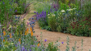 Plantación de vivaces tolerantes a la sequía de Tom Stuart-Smith, el héroe hortícola de RHS Hampton Court Garden Festival 2021