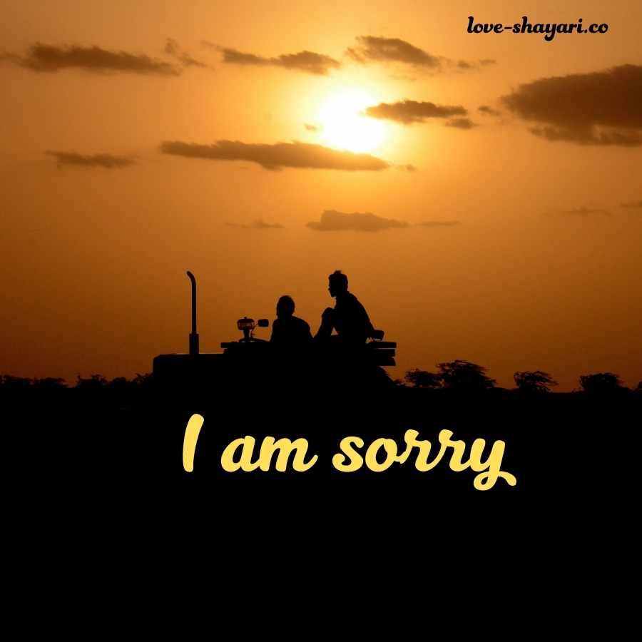 i am so sorry photo