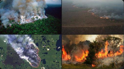 حرائق خطيرة بغابات الامازون وبمعدلات قياسية