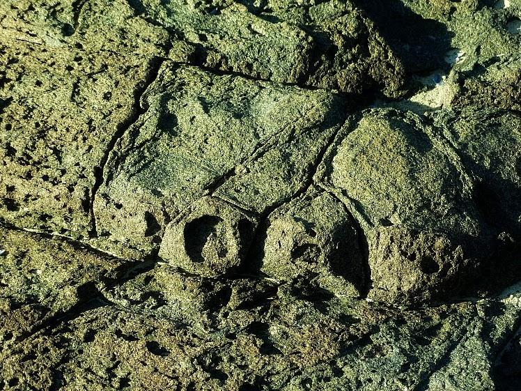 Inscrições na rocha, no Museu Arqueológico do Costão Santinho