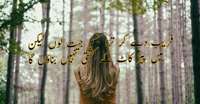 Faraib De kar tera jism jeet lon lekin 2 lines by Tehzeeb Hafi . Shayari in urdu  images for fb status
