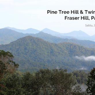 Mendaki Pine Hill & Twin Peak Di Fraser Hill, Pahang Tanpa Rasa Mabuk