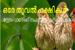 http://orethoovalpakshikal.blogspot.com/2013/01/blog-post.html
