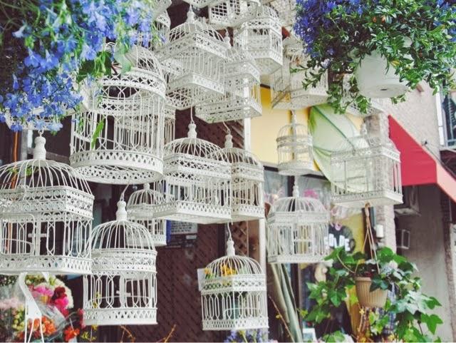 montréal montreal canada quebec mile end lucileinwonderland blog lifestyle voyage food shopping dragon flowers à voir fleuriste