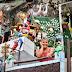 Moradora de SC faz jardim de esculturas: Conheça a 'Casa dos Bichinhos'