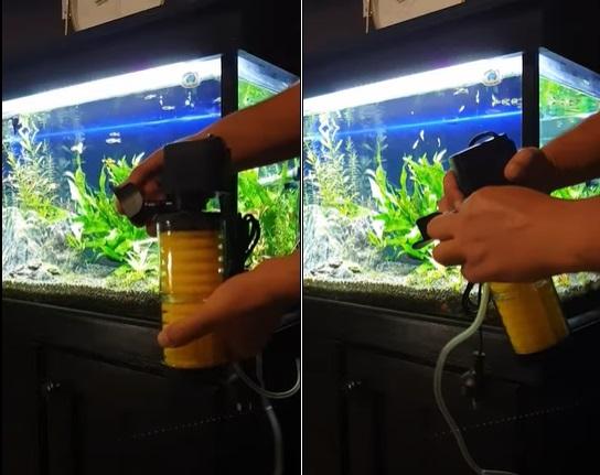 How to setup a Sobo Internal Filter