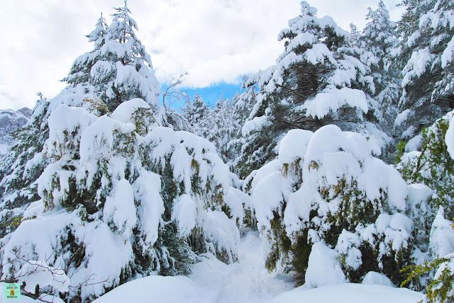 Paisajes nevados en Andorra
