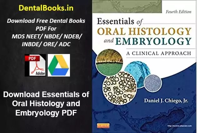 Download Essentials of Oral Histology and Embryology PDF