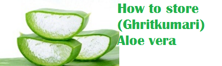 How to store (Ghritkumari) Aloe vera