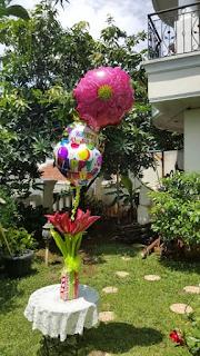 Balloon Flower