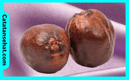 Manfaat buah zuriat-cara konsumsi buah zuriat