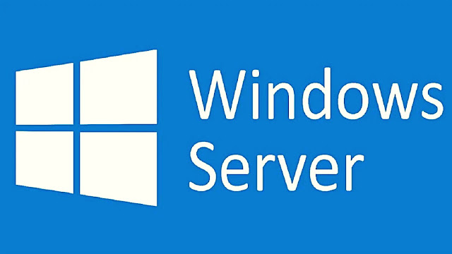 Windows Server istemcilerini etkiliyor. İlginç olan, 2003-2020 yılları arasında yayınlanan tüm (Windows Server 2008 Service Pack 2, Windows Server 2008 Service Pack 1, Windows Server 2012, Windows Server 2012 R2, Windows server 2016, Windows Server 2019, Windows Server version 1903, Windows Server version 1909, Windows Server version 2004) sürümlerinin etkileniyor olması.