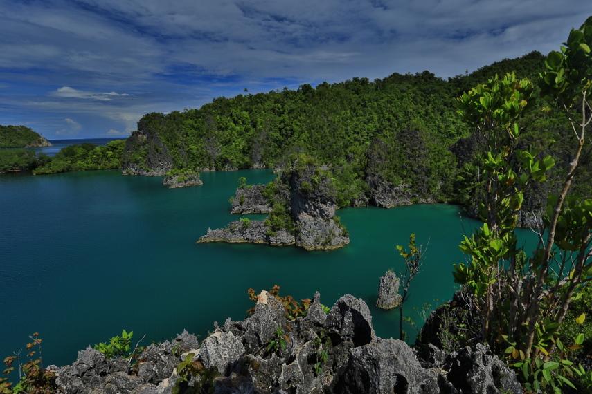Pulau karang di Pianemo Raja Ampat