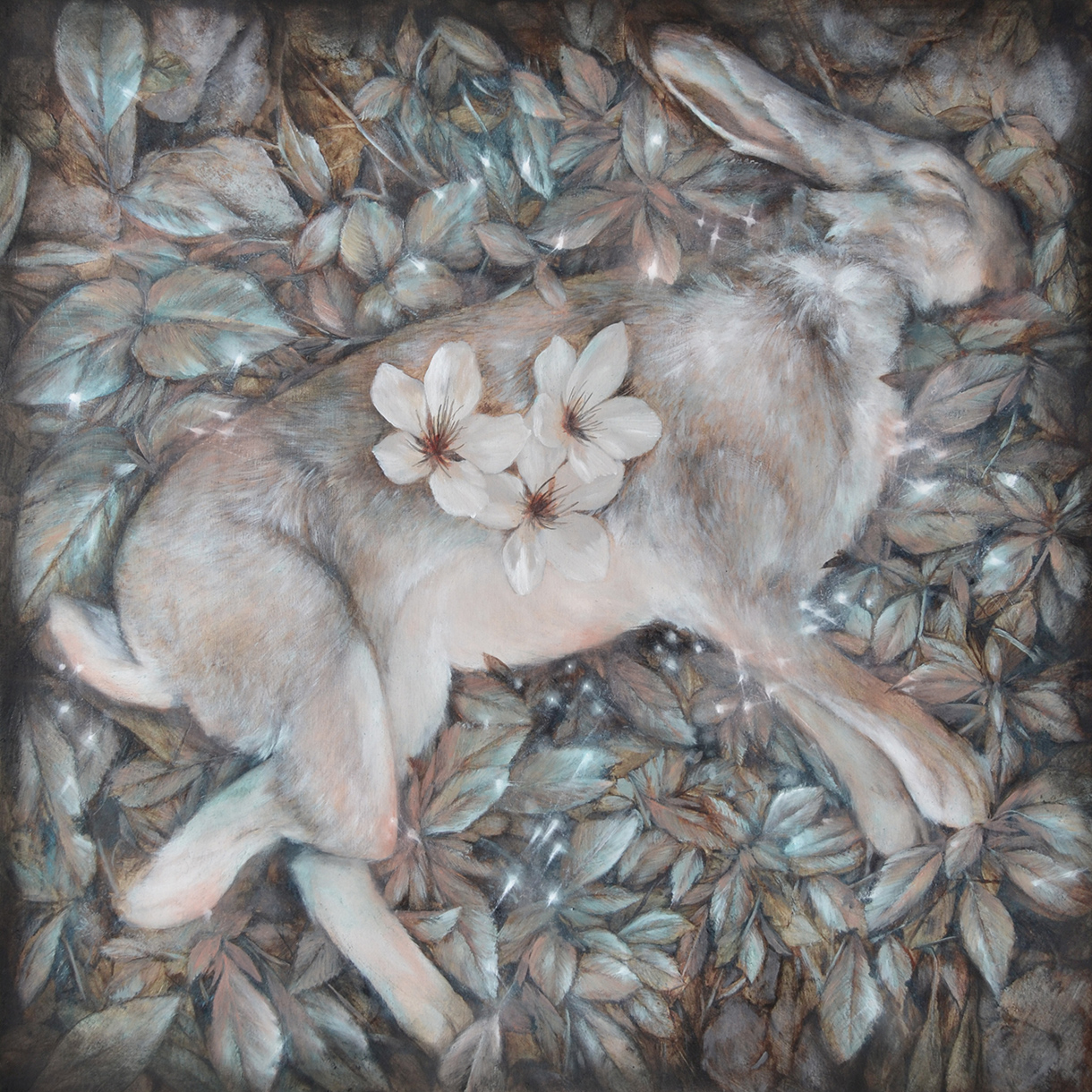 Nunzio Paci - In my garden there is a hare who pretends to sleep