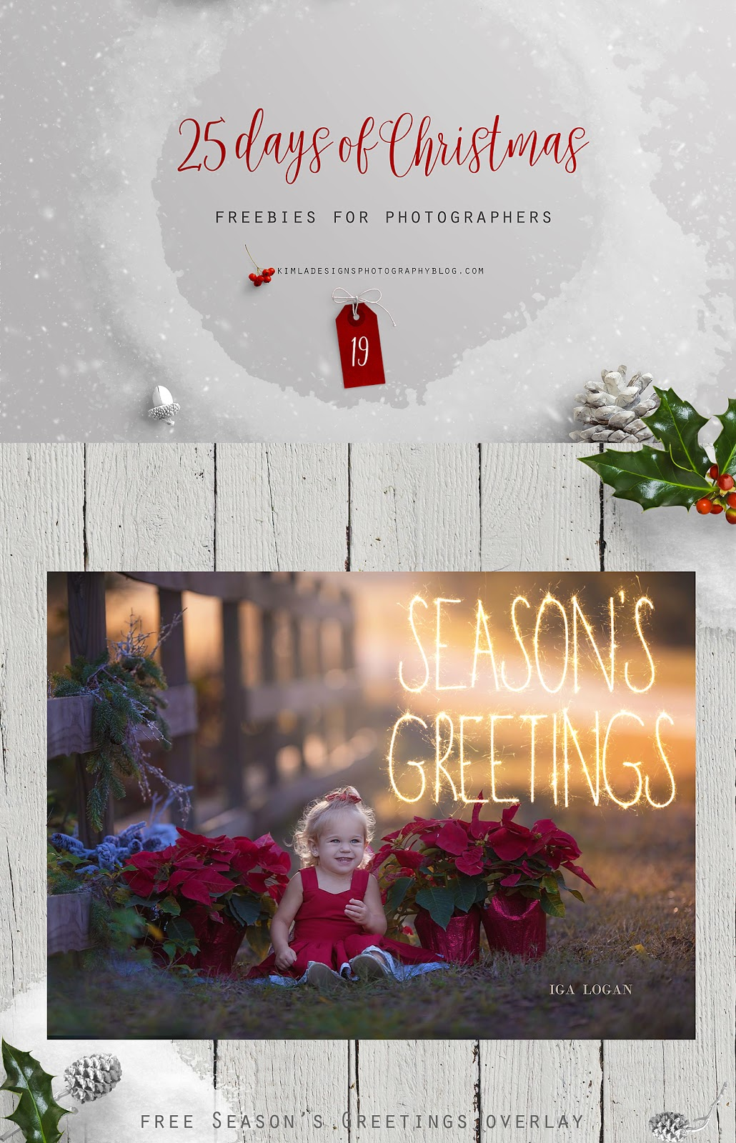 25 Days of Christmas Freebies for Photographers Day 19th