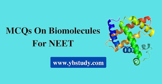 Mcqs on biomolecules for class 12 NEET