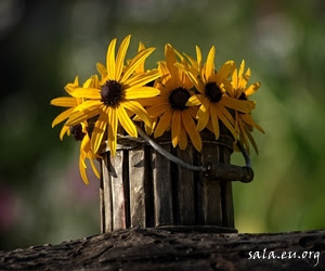 How To Make Flower Plant Pots From Used Goods As Garden Decoration