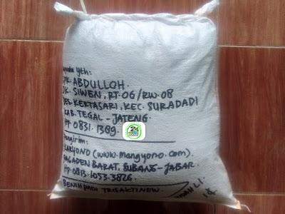 Benih padi yang dibeli   ABDULLOH Tegal, Jateng.  (Setelah packing karung ).