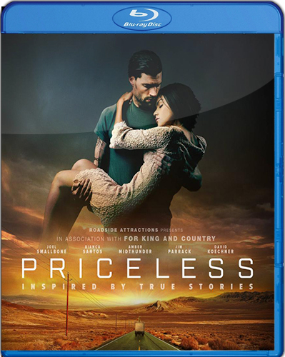 Priceless [2016] [BD25] [Subtitulado]